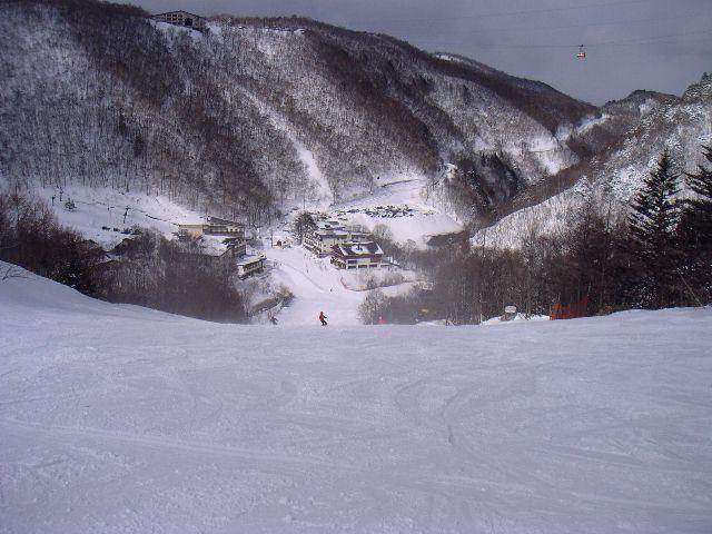 20060320a5.jpg