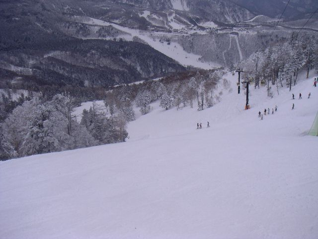 20060320m.jpg