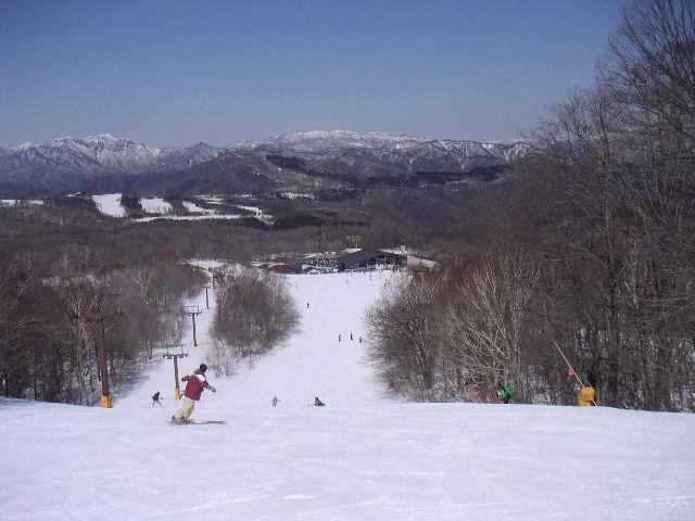 20060325.jpg