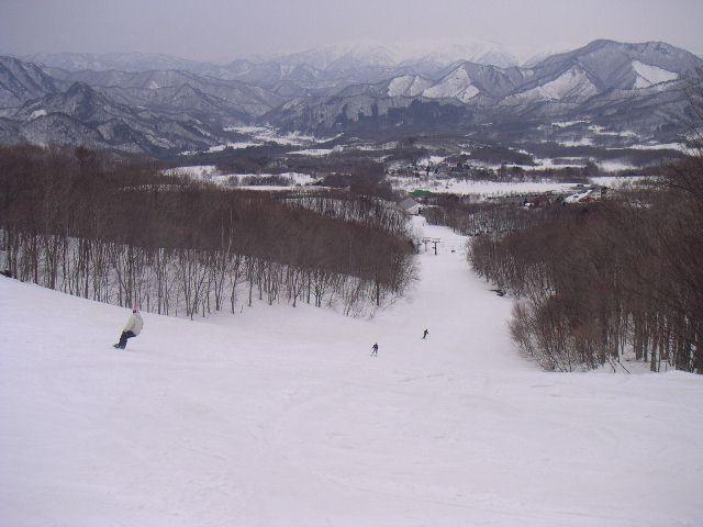 20060326.jpg