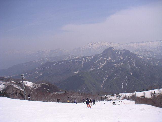 20060506.jpg