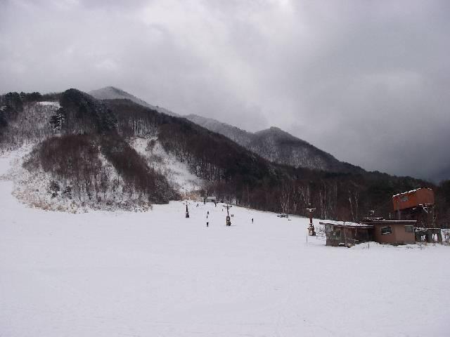 20070211b11.jpg