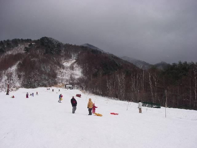 20070211b12.jpg