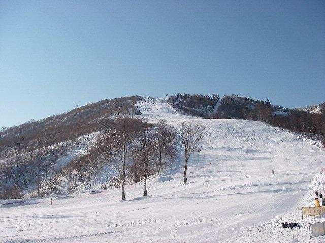 2007112405.jpg