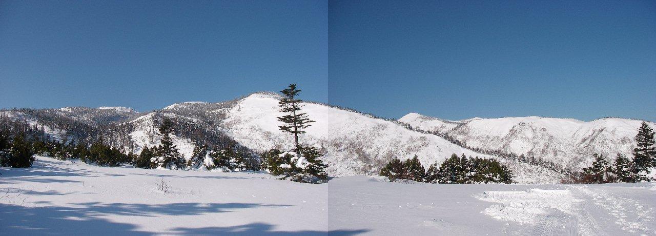 2007112407.jpg