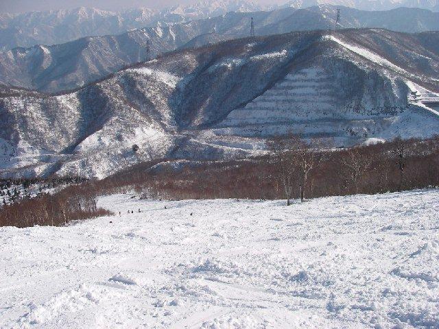 2007112415.jpg