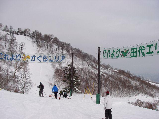 2007121717.jpg