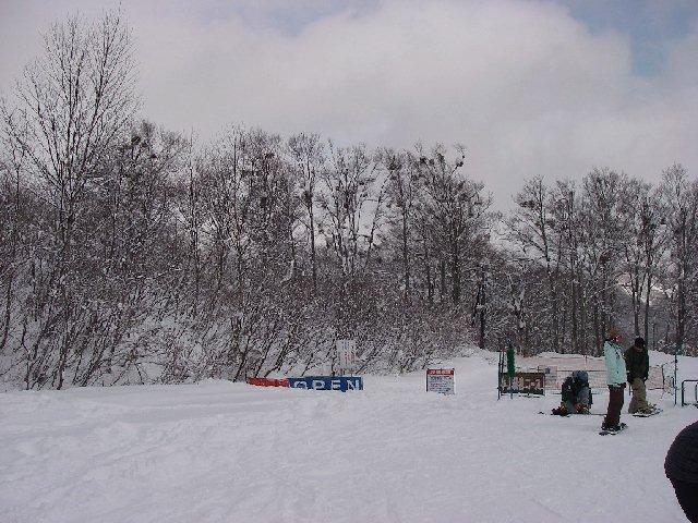 2008010111.jpg