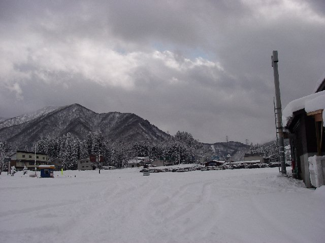 2008010120.jpg