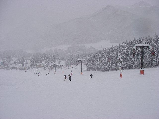 2008010208.jpg