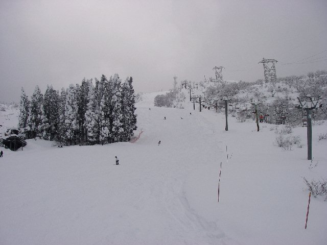 2008010309.jpg