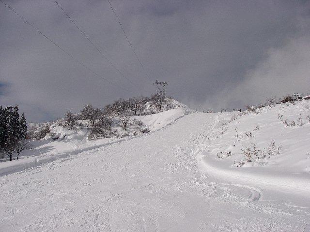 2008010316.jpg