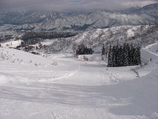2008010317.jpg