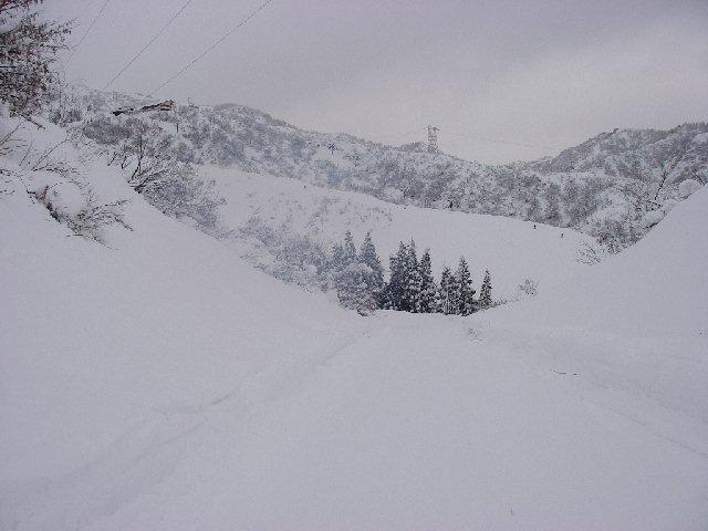 2008010321.jpg