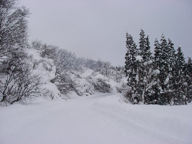 2008010324.jpg
