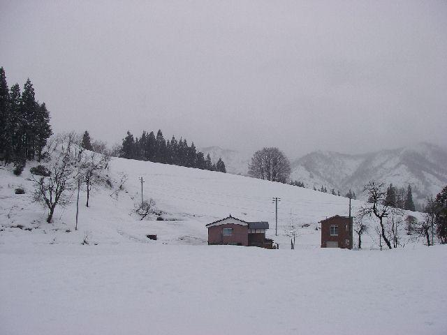 20080112a.jpg