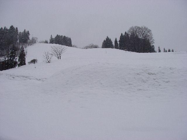 20080112a4.jpg