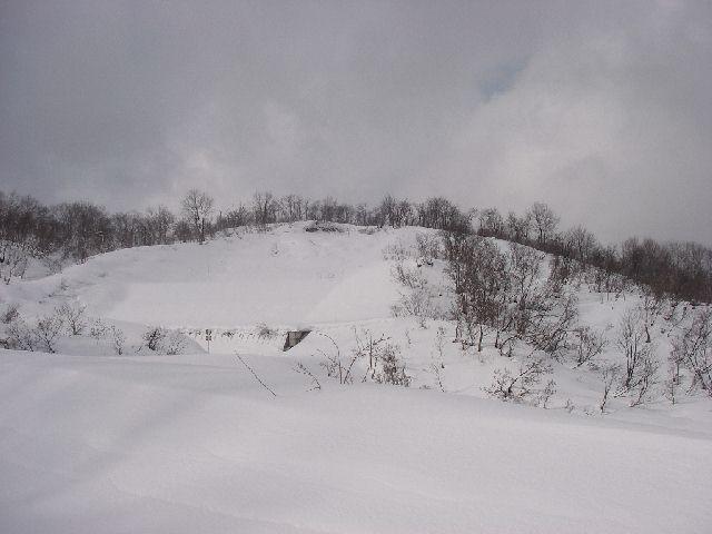 2008011320.jpg