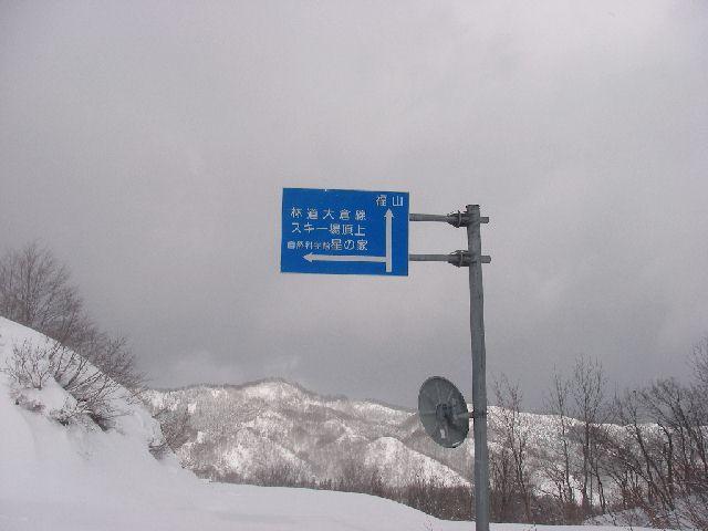 2008011322.jpg
