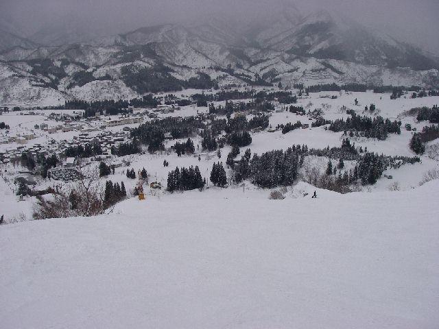 2008011325.jpg