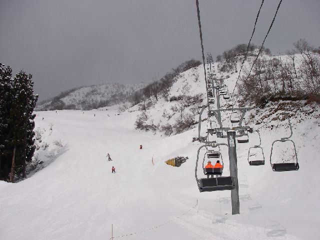 2008011334.jpg