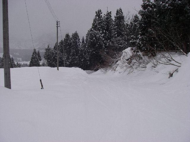 2008011344.jpg