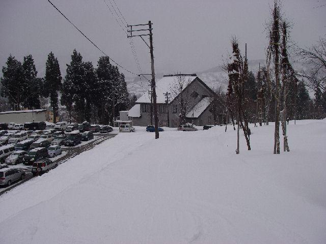 2008011347.jpg