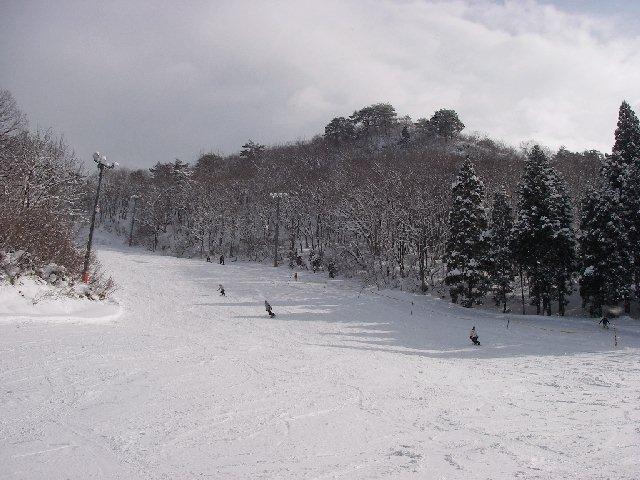 2008011905.jpg
