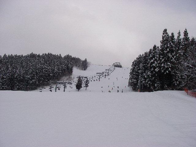 2008011908.jpg