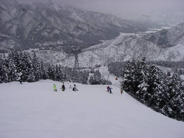2008012021.jpg