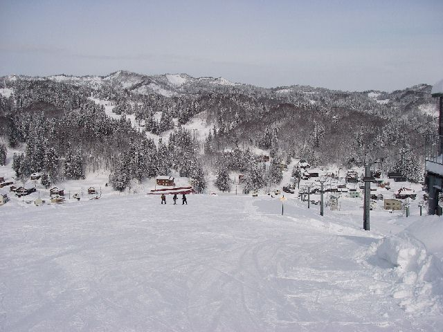 20080202a05.jpg