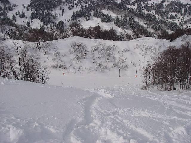 20080202a19.jpg