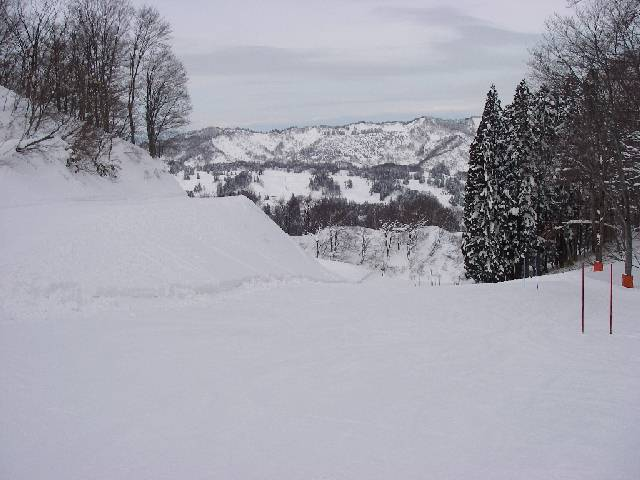 20080202a23.jpg