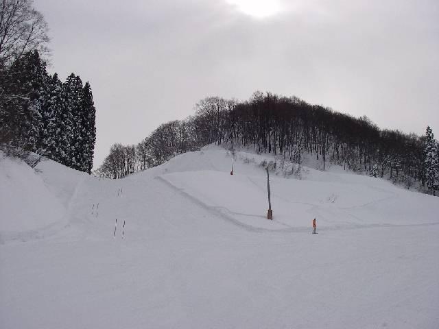 20080202a24.jpg