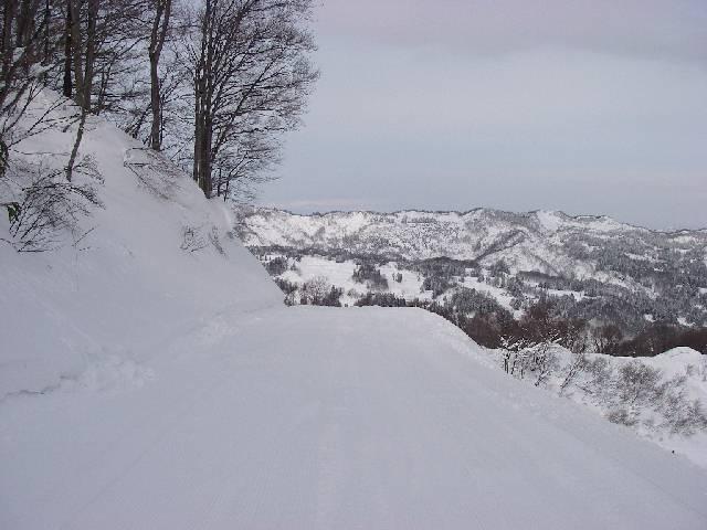 20080202a25.jpg