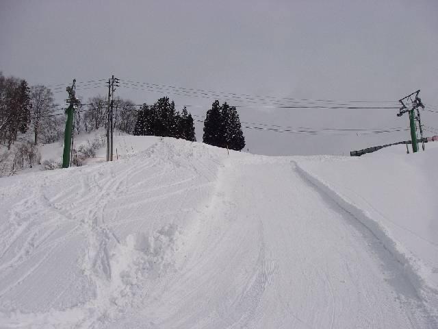 20080202a36.jpg
