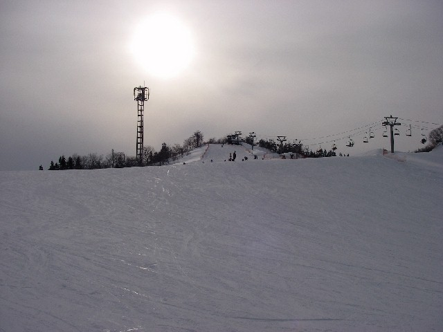 20080202c14.jpg