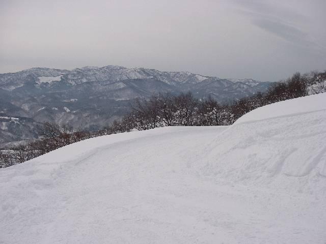 20080209a22.jpg