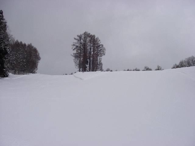 2008021013.jpg
