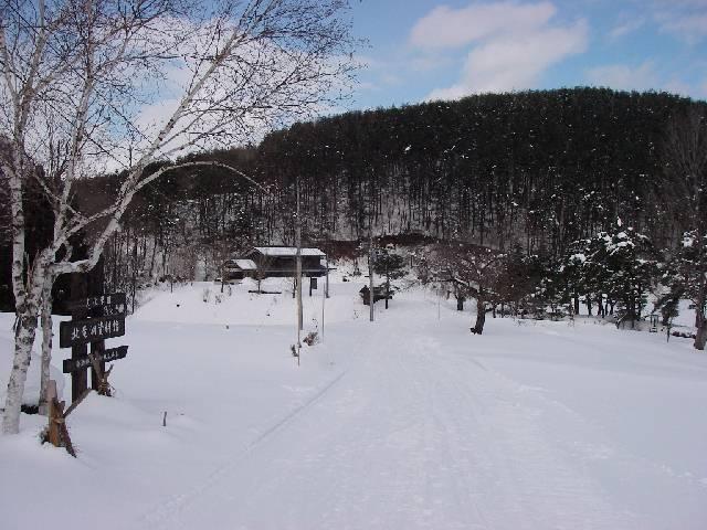 2008021076.jpg
