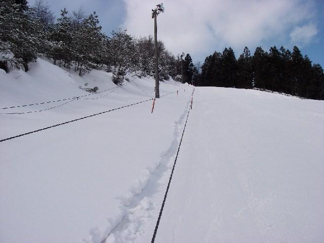 20080217a06.jpg