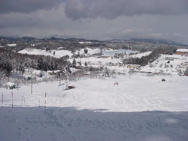 20080217b13.jpg