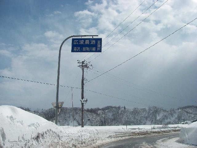 20080217c01.jpg