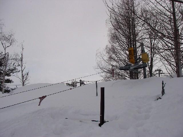 20080217d06.jpg
