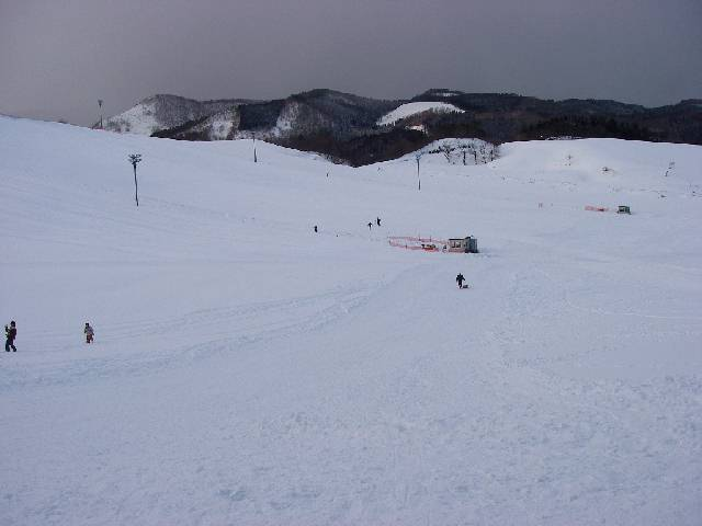 20080217e07.jpg