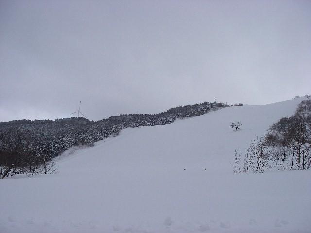 20080218a.jpg