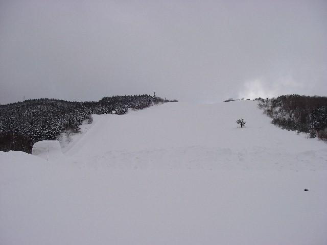 20080218a03.jpg