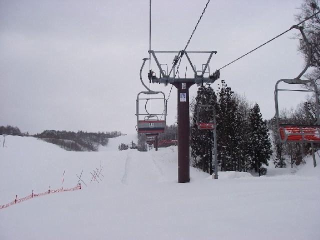 20080218b07.jpg