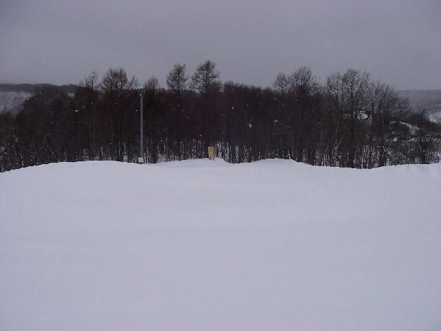 20080218b09.jpg