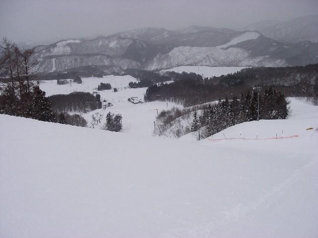 20080218b14.jpg